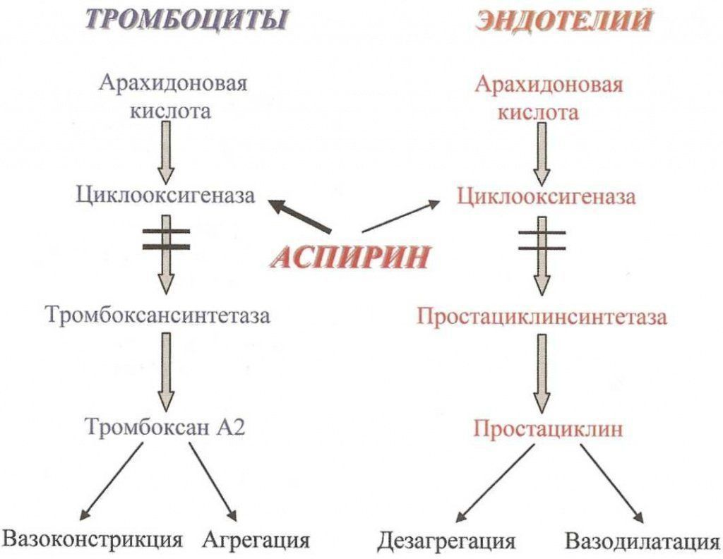 Механизмы действия аспирина