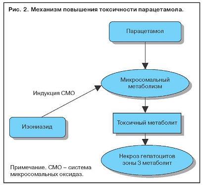 Повышение токсичности парацетамола
