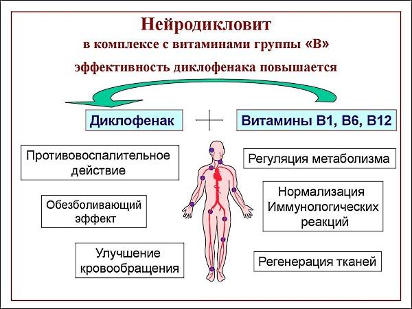 Состав и действие препарата