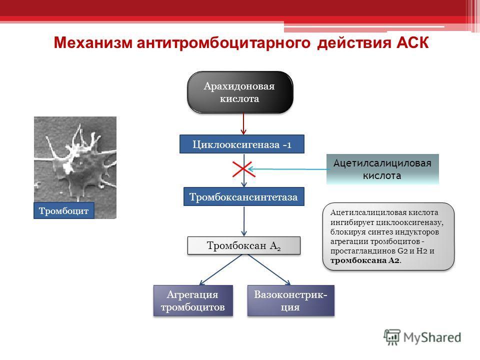 Антитромбоцитароное действие АСК