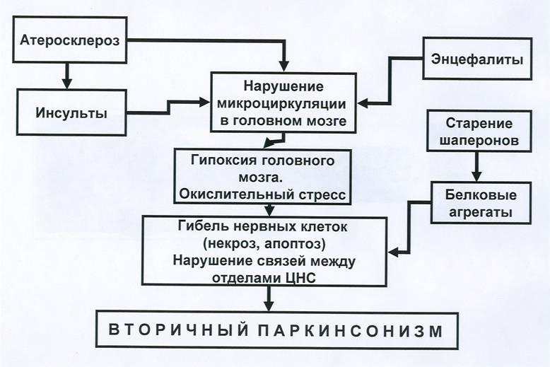 Клиника вторичного паркинсонизма