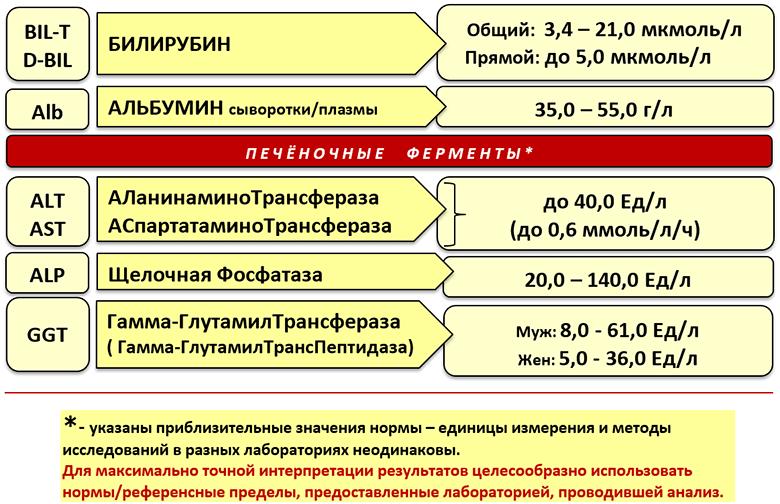 Нормальные показатели печеночных ферментов